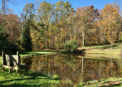Upper Pond Bench Fall